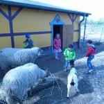 Bauernhof 109